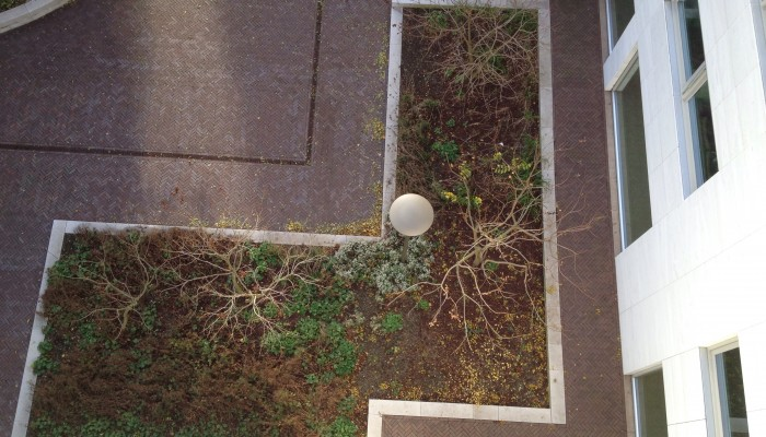 Daktuinen Overhoeks winterklaargemaakt